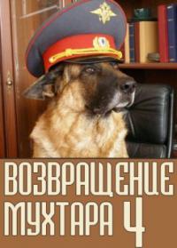 сериал Возвращение Мухтара 4 сезон онлайн