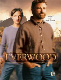 сериал Любовь вдовца / Everwood 3 сезон онлайн
