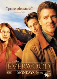 сериал Любовь вдовца / Everwood 4 сезон онлайн