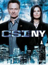сериал Место преступления: Нью-Йорк / CSI: NY 9 сезон онлайн