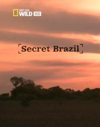сериал Неизвестная Бразилия / Secret Brazil онлайн